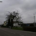 Ortseingang Windsberg von Pirmasens kommend